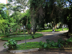 España park
